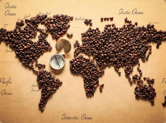 Świat kawy - Coffed